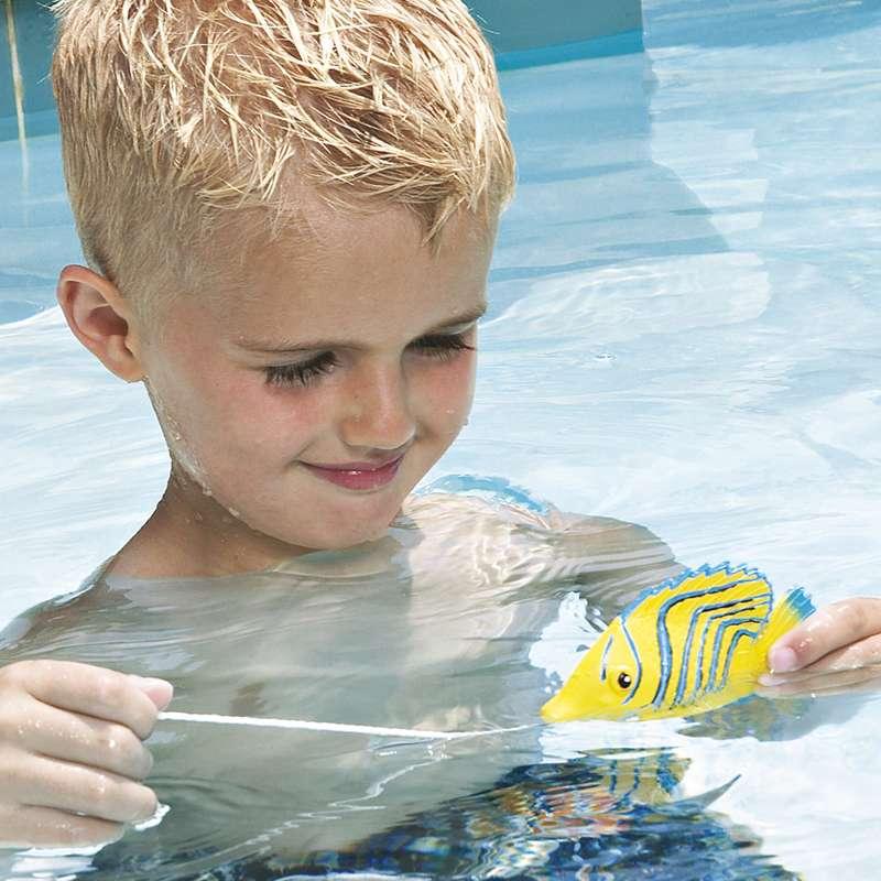 Pesci tropicali micro per piscina 1000 piscine for Pesci finti per piscina