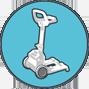 carrello Caddy di trasporto Robot piscine Dolphin Maytronics