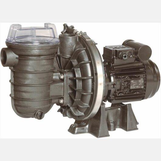 Pompa Sta-Rite 5P2R