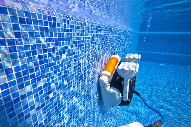 Dolphin explorer spazzole combinate kanebo robot for Robot piscina