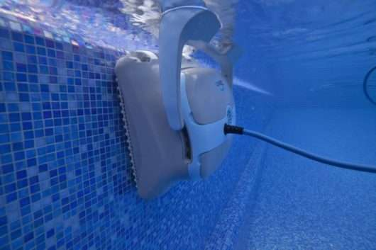 dolphin zenit 20 pulizia pareti piscina