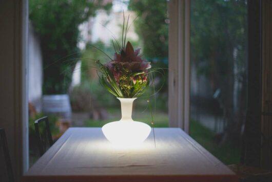 Lampada Loop Pro