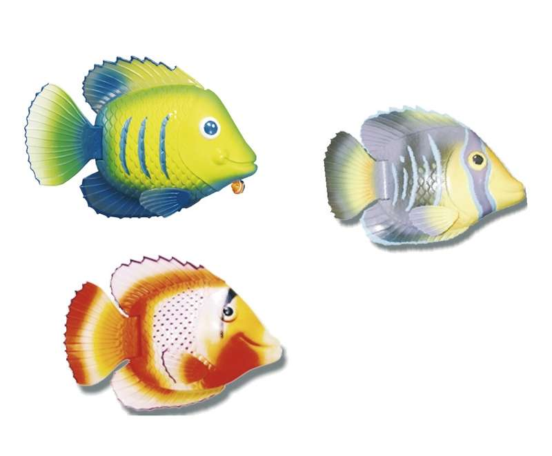Pesce Tropicale Mini