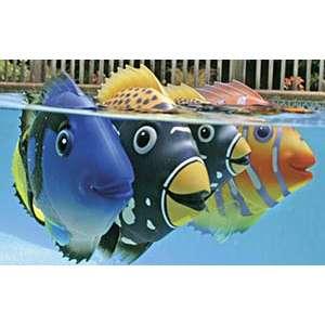 Pesce tropicale per piscina 1000 piscine for Pesci finti per piscina